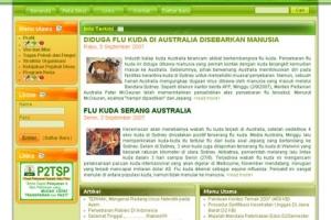 web16.jpg