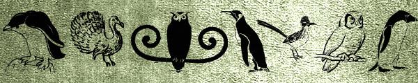02-owlsandmore