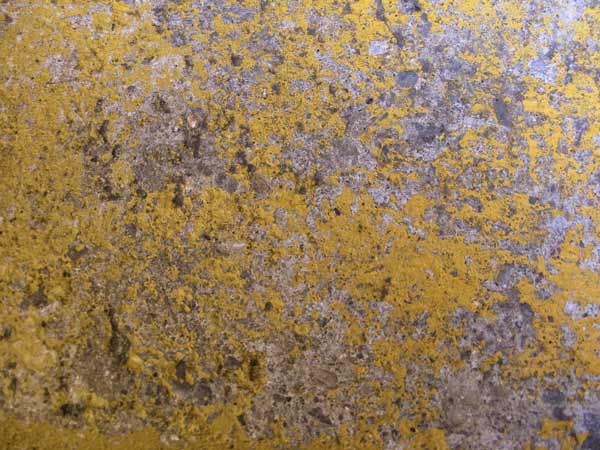yellow concrete texture 7
