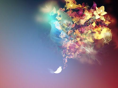 birds__by_kamilk