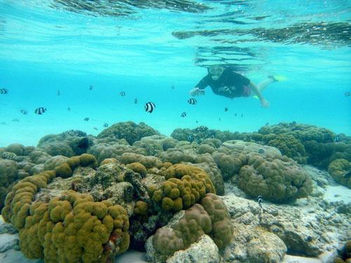 Underwater3