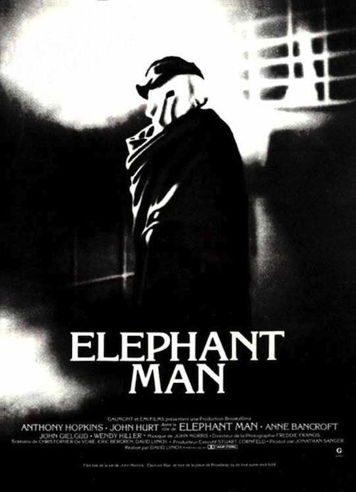 12-elephant