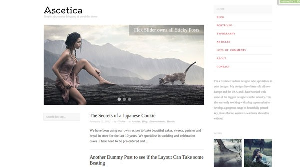 ascetica-wordpress-theme