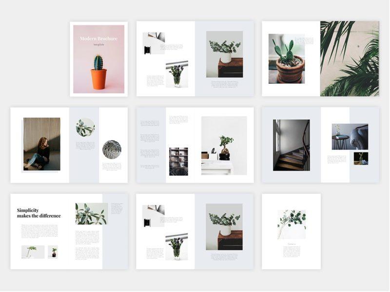 Free Adobe Indesign Brochure Template Artfans Design